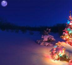 happy-holidays-speakerninja-featuerd