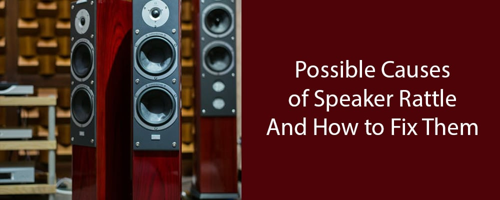 Possible Causes of Speaker Rattle - SpeakerNinja